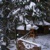 """гостьовий будинок, номери зі зручностями на терріторіі ТК """"Буковель"""" о гірських витягів - 300 м"""