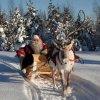 Буковель дід мороз свято новий рік