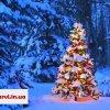 Фото Новый год Буковель отель Поляница Рождество 2019