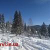 отзывы отдых летом зимой Яблуница  частный сектор снять дом недорого